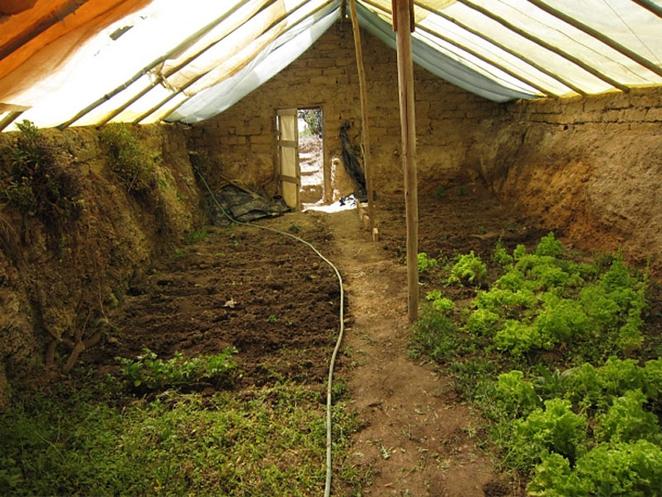 The Walipini Greenhouse Low-Down