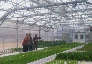 greenhouse design course