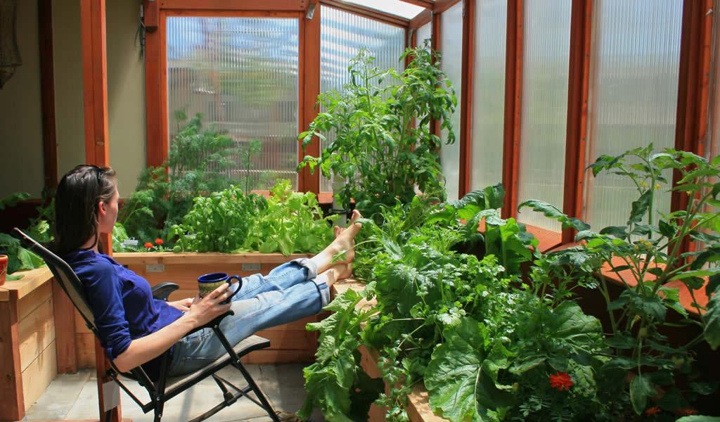 Year-Round Greenhouse