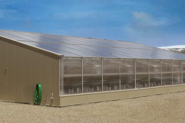 Advanced, Automated Cannabis Greenhouse