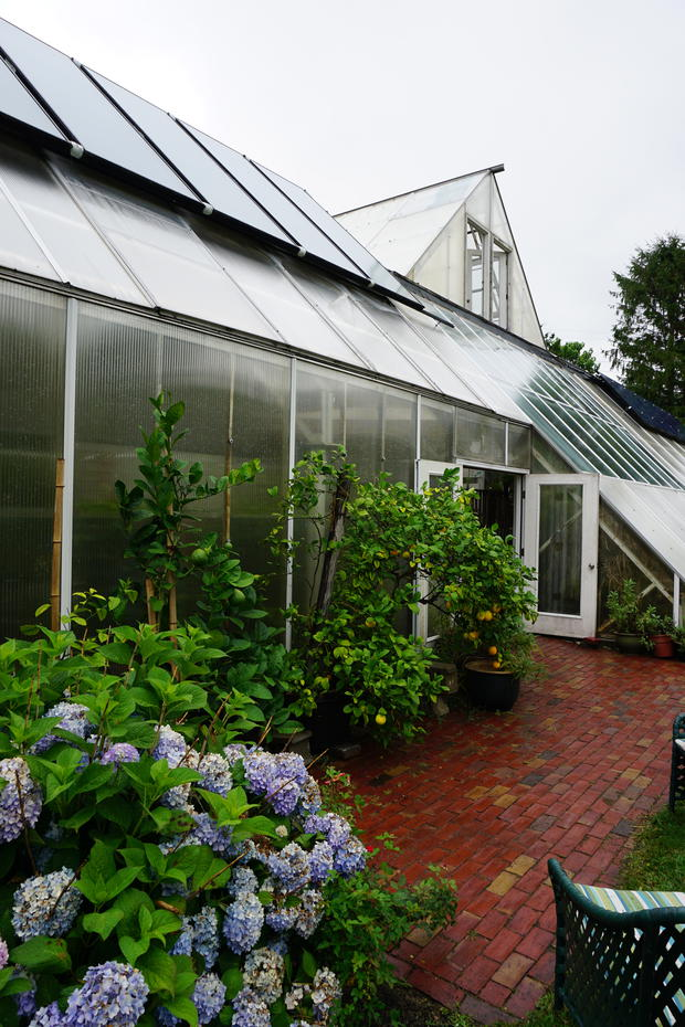 The Green Center greenhouse, Woods Hole MA