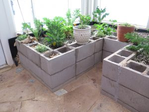 Year-round greenhouse with concrete raised beds