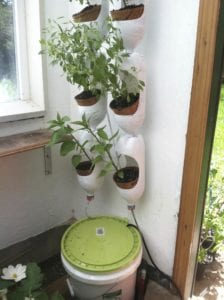 Vertical planters greenhouse