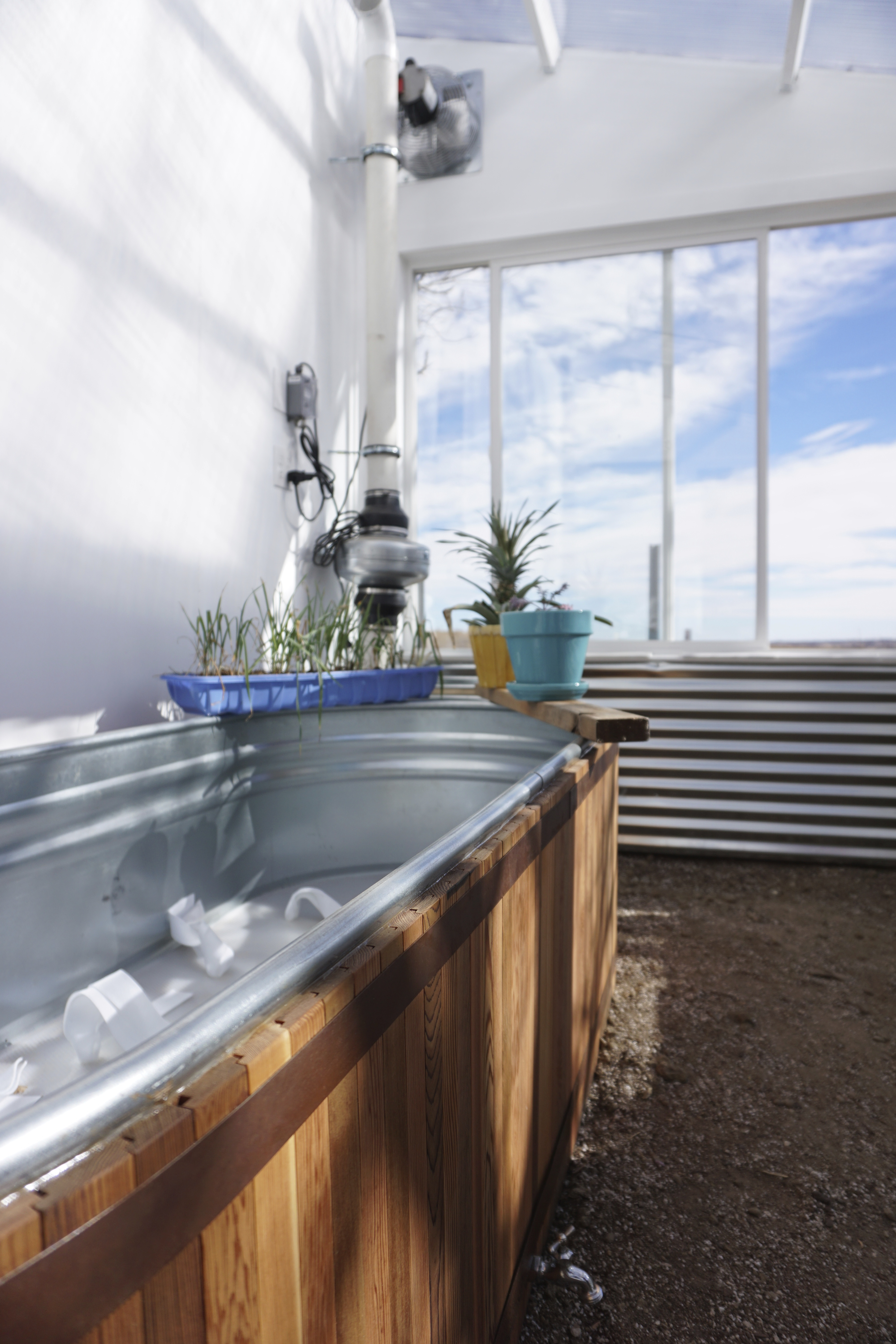 self-watering planter in ceres greenhouse
