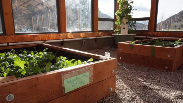 Raised beds in a custom school greenhouse
