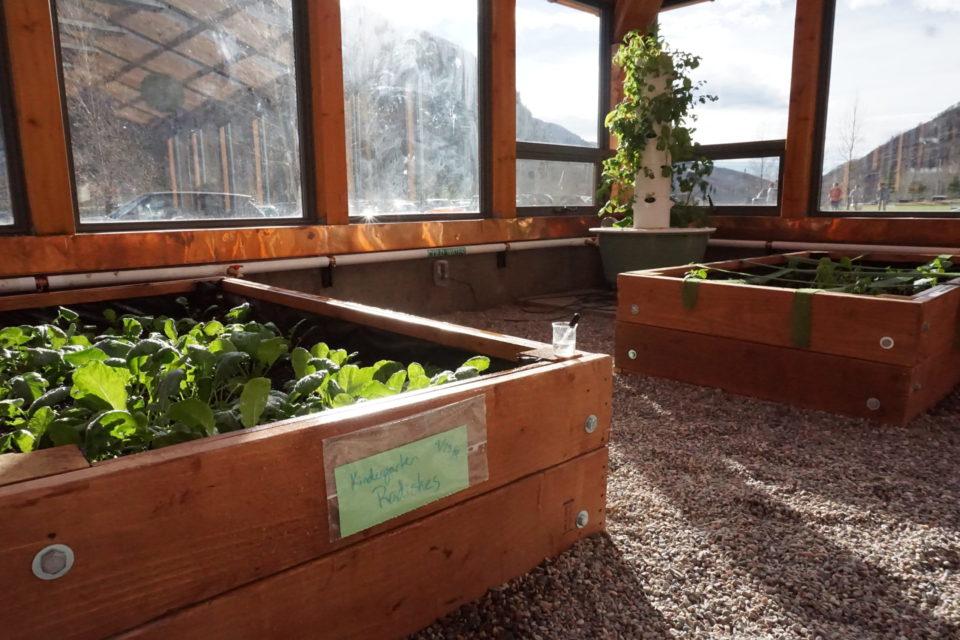 3 Types of Greenhouse Floors