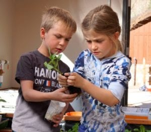 Kids growing in a year-round school greenhouse