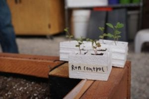 School greenhouse