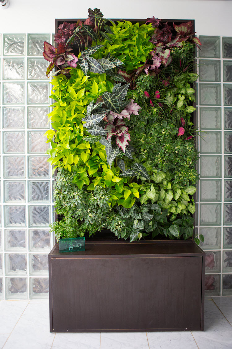 Green walls review ceres greenhouse Green walls vertical planting systems