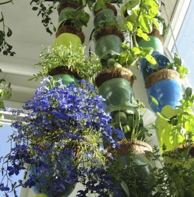 Vertical growing in a greenhouse