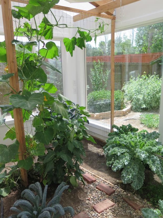 solar greenhouse summer growing