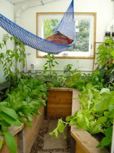 Backyard greenhouse with hammock