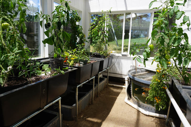 Aquaponic Greenhouse by Ceres Greenhouse Solutions