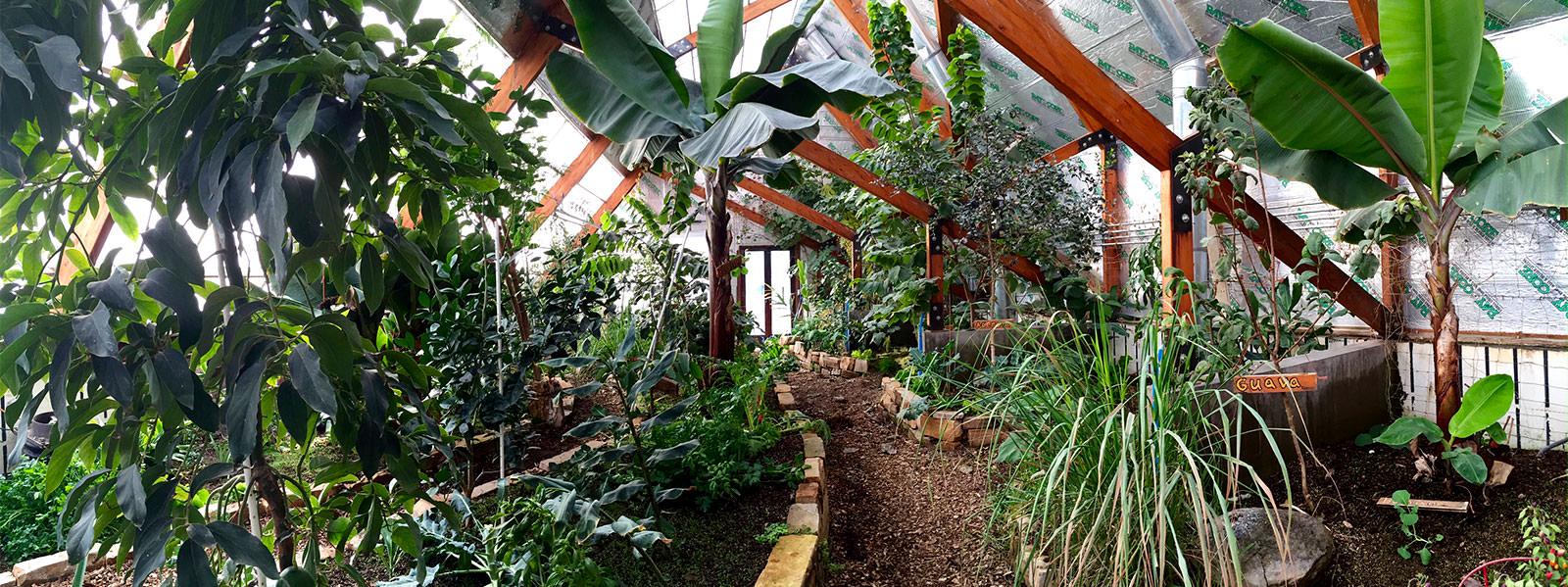solar greenhouse design u0026 construction year round growing