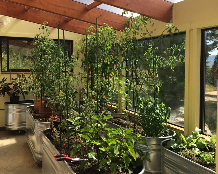 Solar Greenhouse with self-watering planter