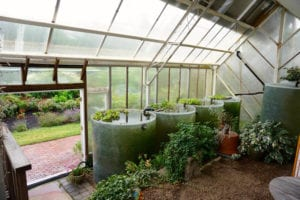 Passive solar greenhouse with thermal mass at the Green Center