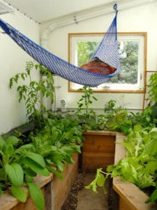 Year-round greenhouse with hammock