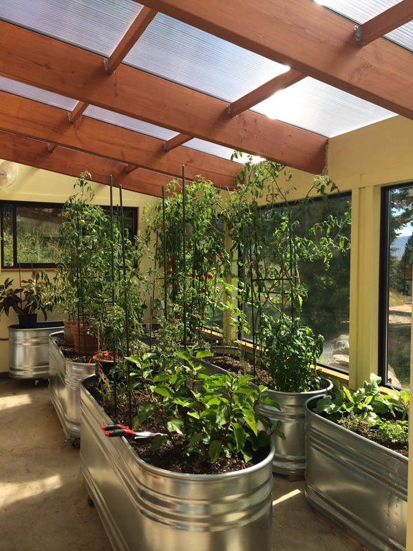 year-round greenhouse
