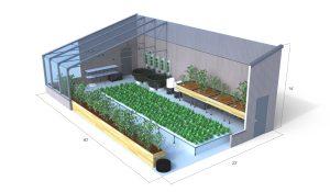 Aquaponics greenhouse