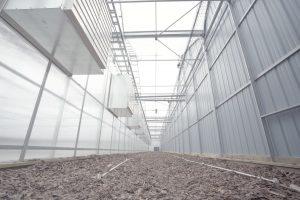 Odor control in Tantalus lab cannabis greenhouse