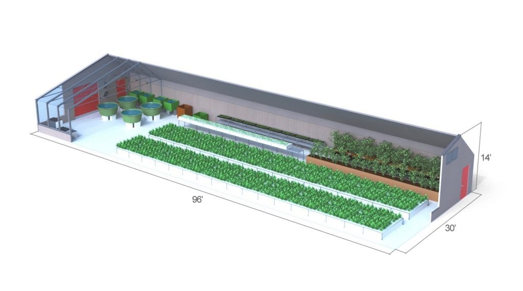 Can A Commercial Aquaponics Greenhouse Be Profitable Ceres - Aquaponics business plan templates
