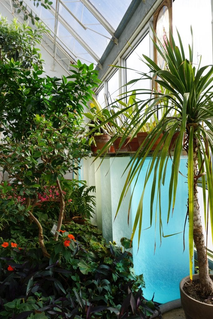 water wall in a solar greenhouse