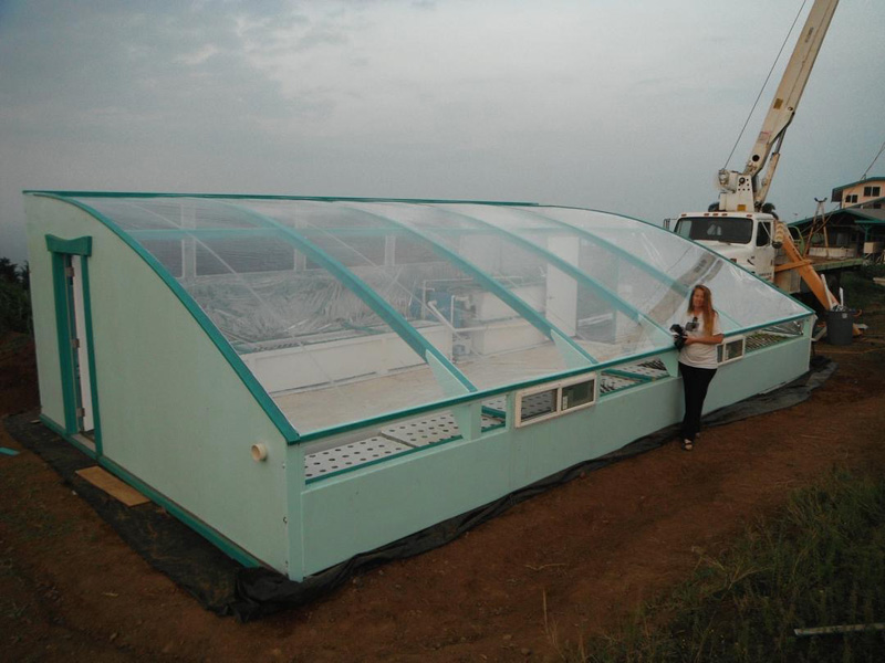 Aquaponic Greenhouse from Friendly Aquaponics in Hawaii