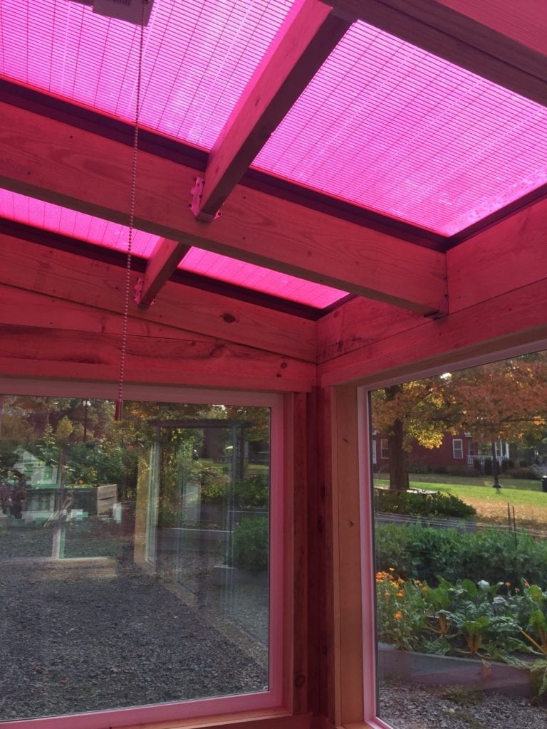 pink greenhouse glazing