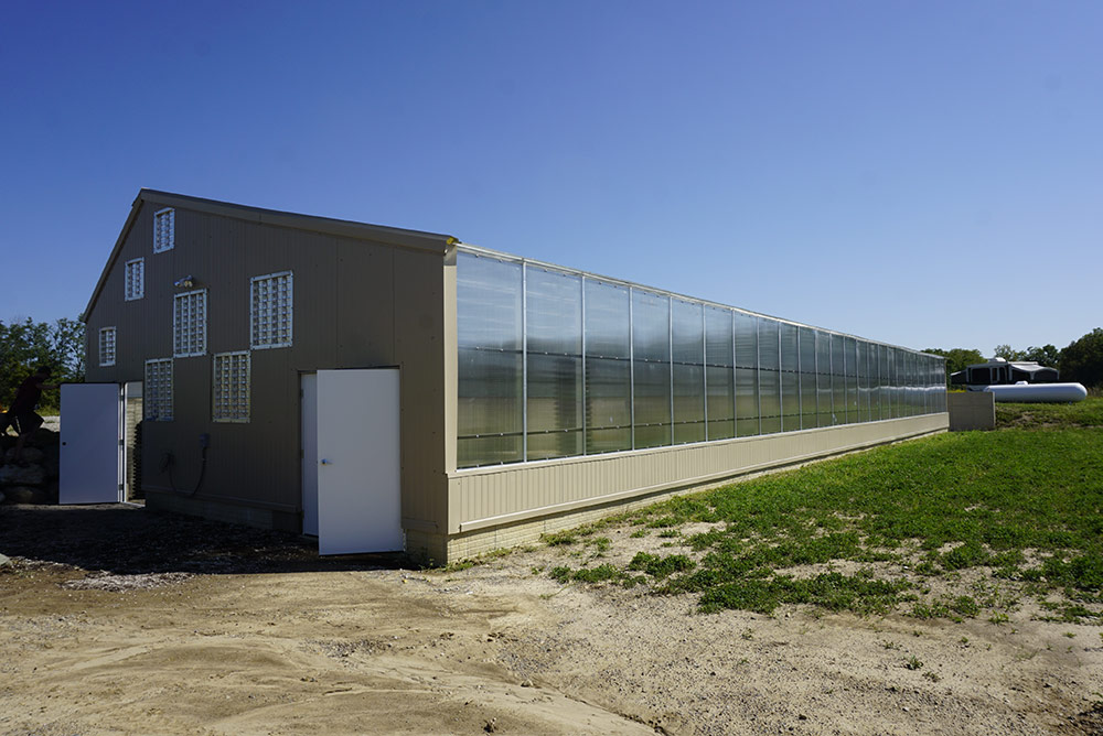 Commercial Greenhouse Design - Solar Greenhouses   Ceres