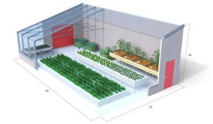 ceres_hydroculture_greenhouse_03
