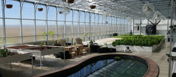 ceres_hydroculture_greenhouse_hydro