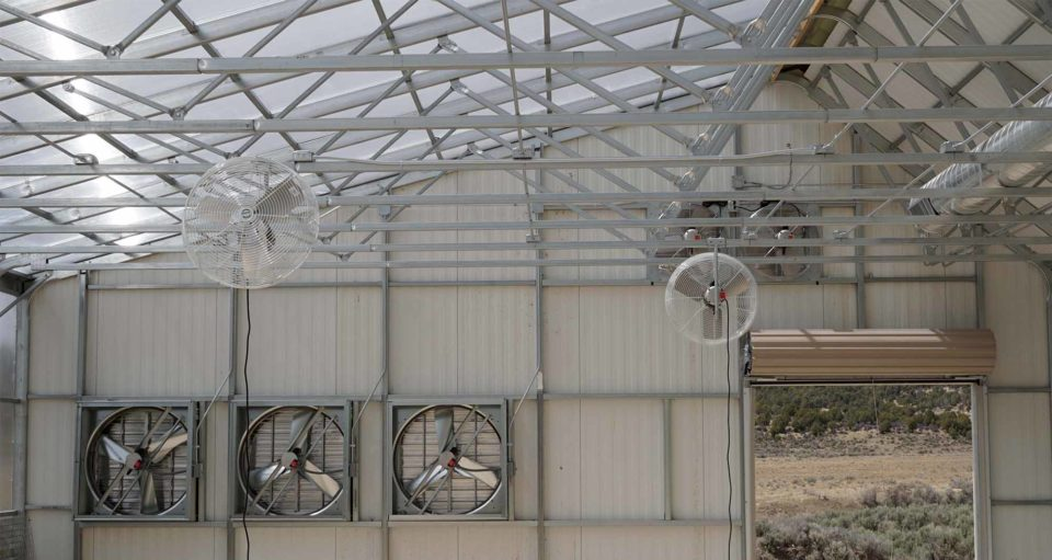 Solar Greenhouse Basics: Ventilation