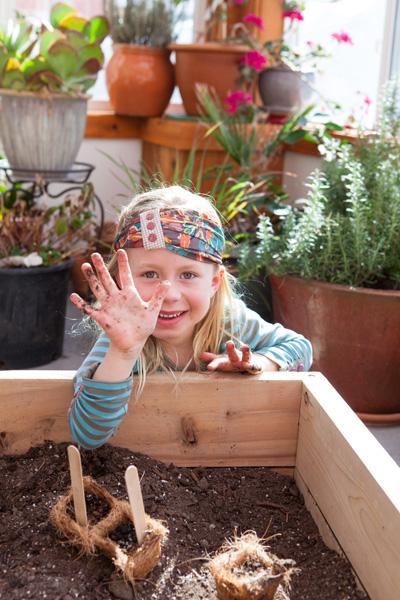 custom school educational greenhouse