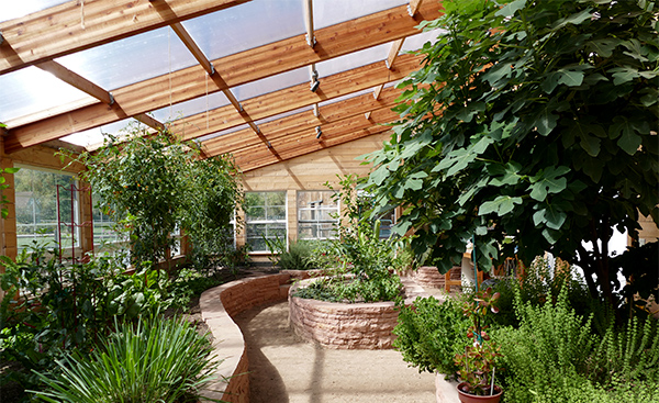 inside a residential greenhouse