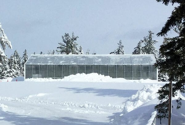 all-weather greenhouse